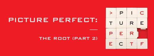 Picture Perfect - The Root (Part 2)